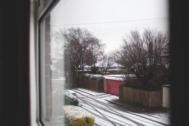 Snow day -5